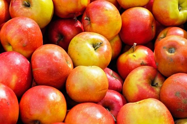 Есть ещё множество зимних сортов яблок.