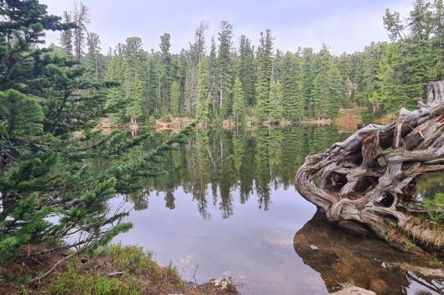 Озеро Медвежье, недалеко от него случилась трагедия.
