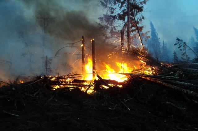 сообщение о возгорании поступило 29 сентября в 15.30.