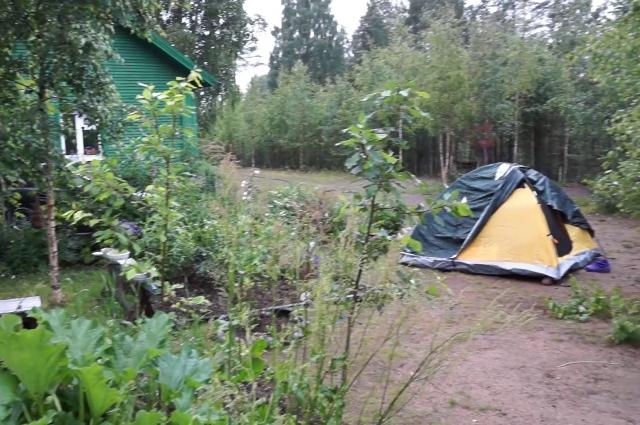 Никто не запрещает поставить палатку в лесу.