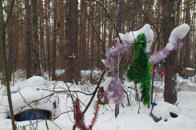 Отшельник нарядил дерево на Новый год.