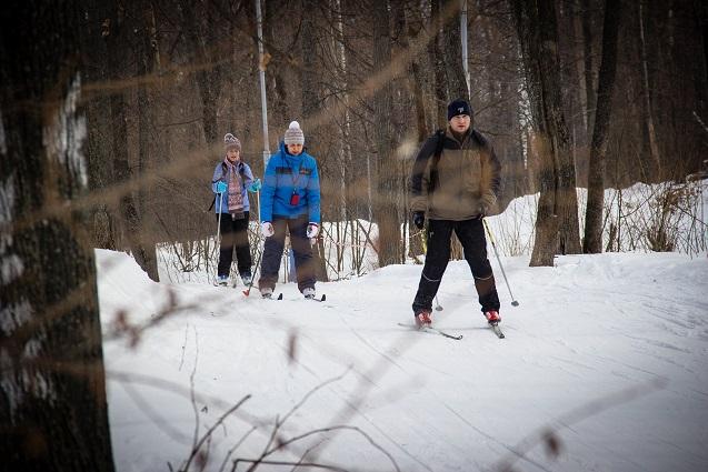 У новосибирцев есть возможность прокатиться на лыжах по лесу