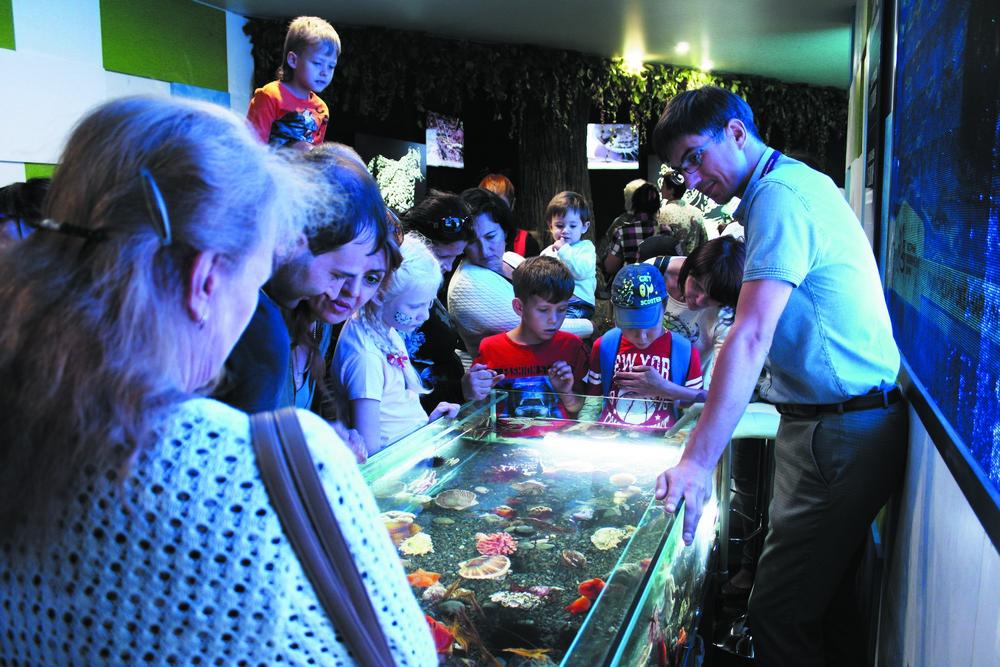 Океанариум привёз для зрителей аквариум.