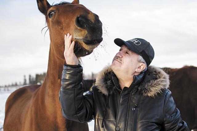 Николай Шашерин привязан к лошадям с детства.