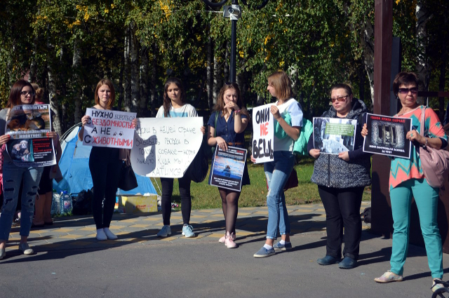 Десятки неравнодушных тюменцев собрались в Сквере гимназистов
