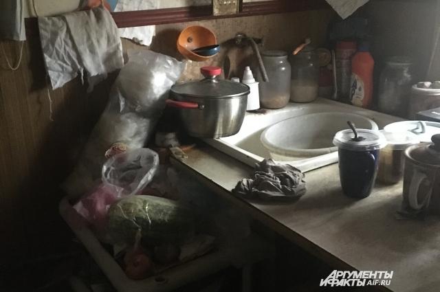 Так выглядит кухня пожилой обладательницы дома-бочки.