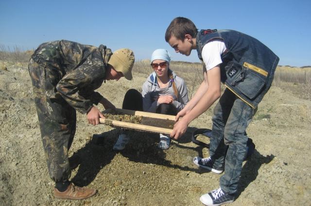 Уже 4 года ребята занимаются палеонтологическими раскопками.