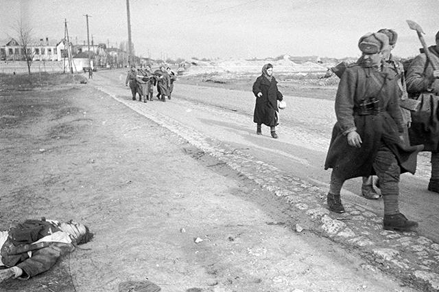 На дороге освобожденного Херсона. 1944 г.