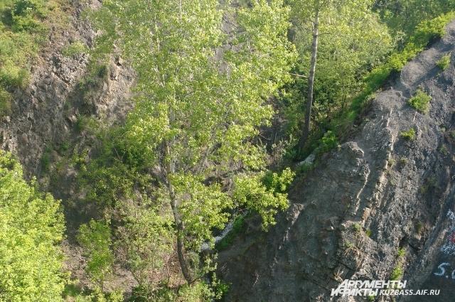 До недавнего времени наша область была на последнем месте по числу памятников природы среди всех субъектов Федерации.