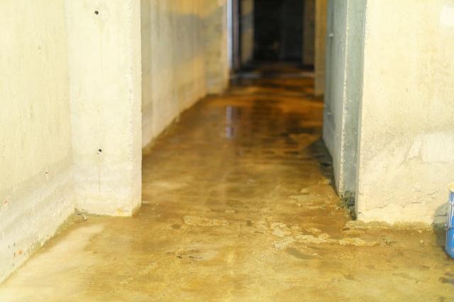 В подвале в доме постоянно вода, из-за которой во многих квартирах стоит неприятный запах.