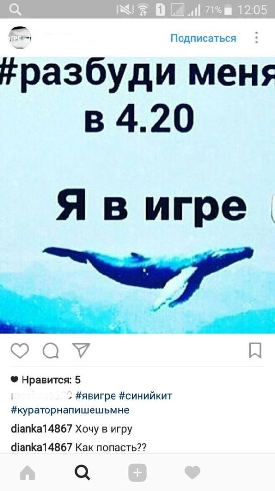 ссылка на группу в вк синий кит