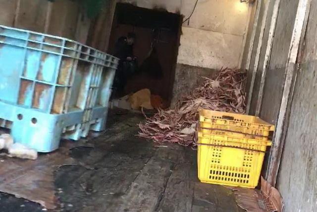 Браконьерский цех по производству крабов.