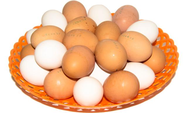 240 млн яиц в год производит СПК «Окинский».