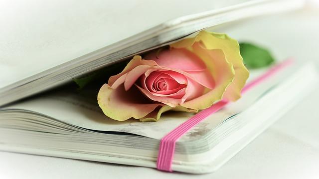 стихи,, поэзия, книга, розы, романтика