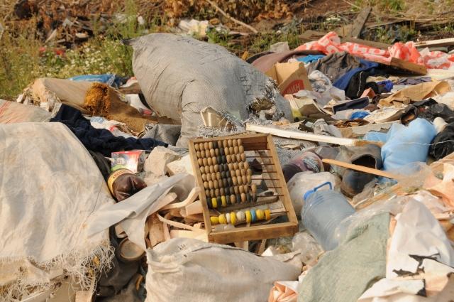 Красноярцы готовы сортировать мусор, одна для этого нужны раздельные контейнеры.