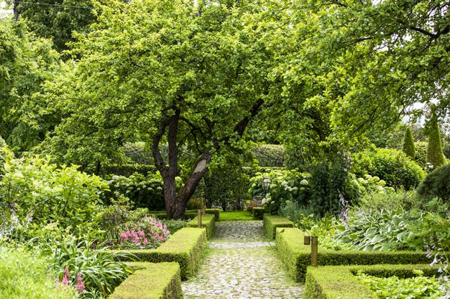 Кроны деревьев склонились над бордюрами строгой геометрической формы.