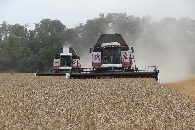 Механизаторы стараются убрать урожай как можно быстрее.