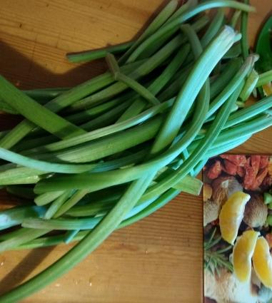 В России овощной ревень появился в XVIII веке.