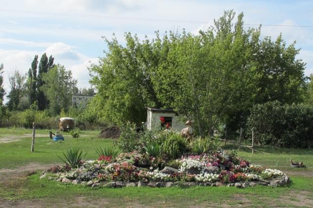 У Евгении Тихоновны есть хобби, которое не связано ни с самбо, ни с лошадьми — это садовый дизайн