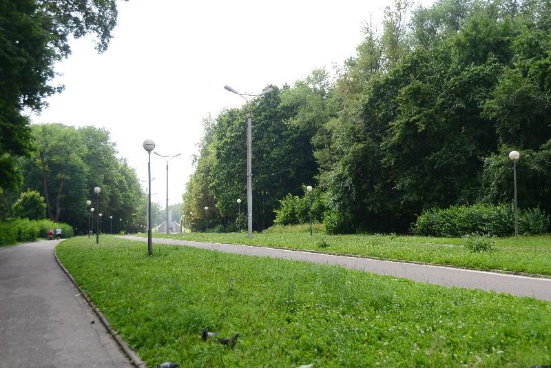 Реадовка - один из любимых парков смолян - тоже станет частью «зелёного пояса».