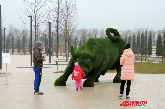 В парке Галицкого установлена фигура быка, являющего символом ФК «Краснодар».