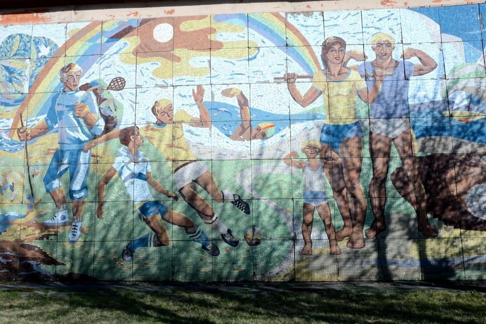 Мозаика на стадионе в Иркутске-2