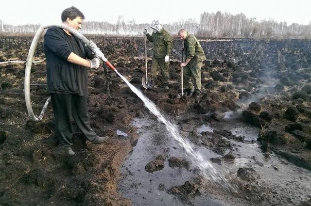 Волонтёры обводнили торфяники весной, не дожидаясь возгораний.