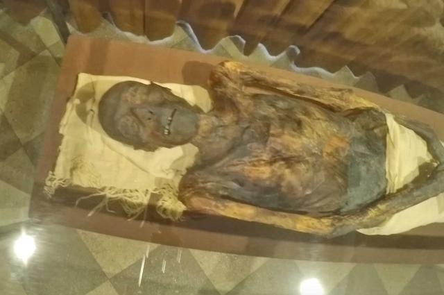 Останкам жреца Па-ди-иста около трёх тысяч лет. Египтянин лежит в герметичном коробе и улыбается толпам туристов, иногда зло и насмешливо, иногда немного грустно.