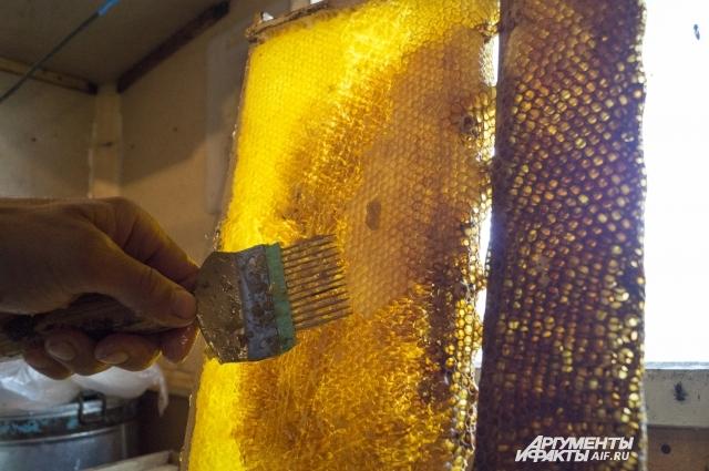 Тёмный или светлый - неважно. Любой натуральный мёд будет полезным.