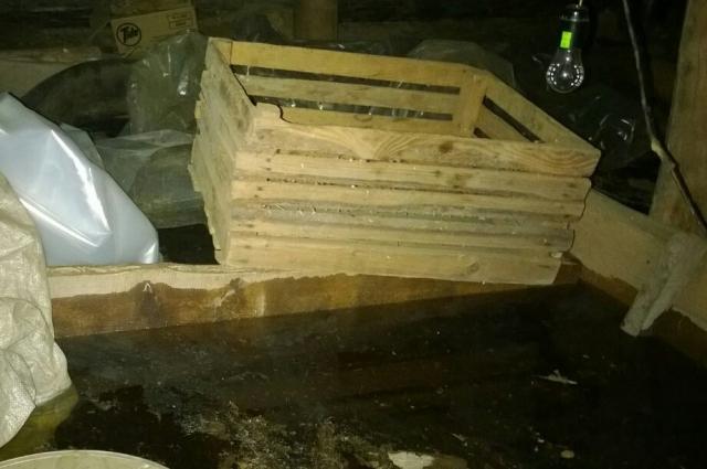 Подполье с овощными припасами затопило так, что воду откачивала пожарная машина.