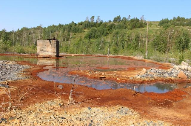 Отвалы можно рекультивировать карбонат-щелочными породами, чтобы добиться нейтральной среды.