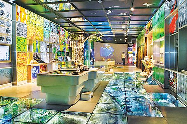Палеонтологический музей в Стерлитамаке будет высокотехнологичным.