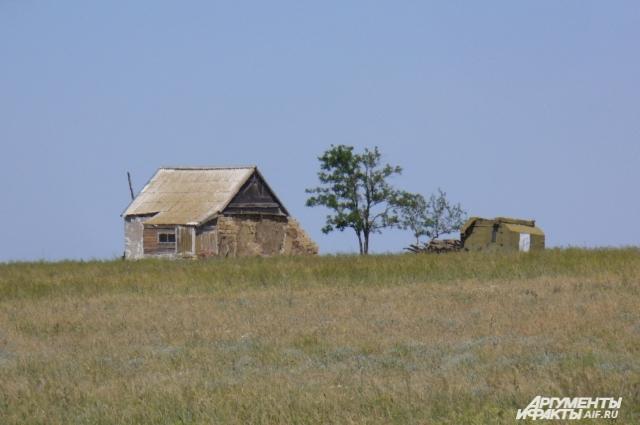 В этом домике неделями живут учёные, наблюдая за жизнью мустангов