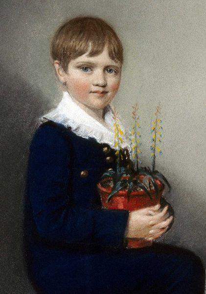 Чарльз Дарвин в возрасте семи лет (1816), за год до безвременной кончины его матери