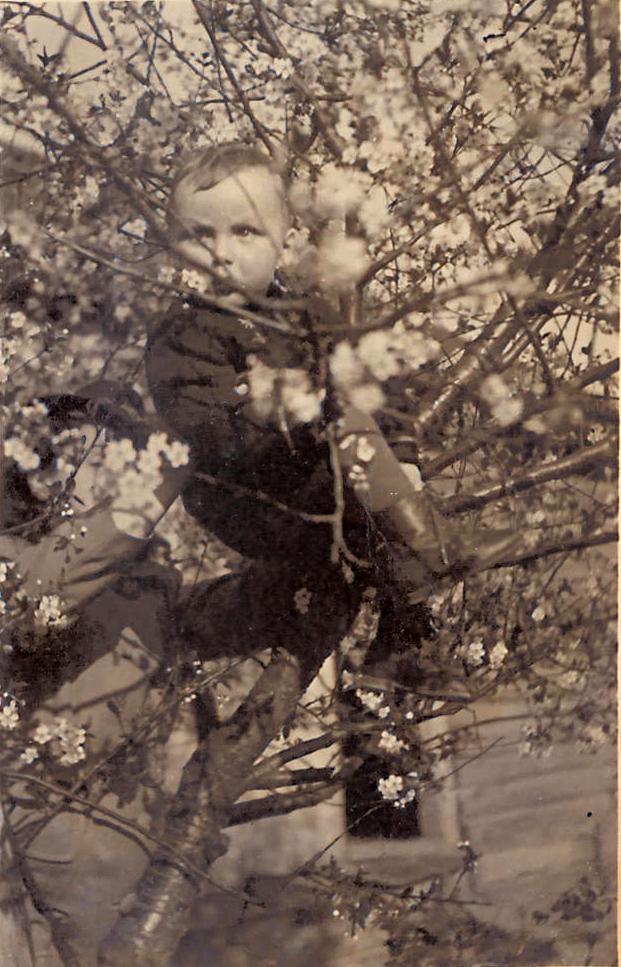 Маленький Женя в саду в деревне Михалково (ныне - поселок Михалково)