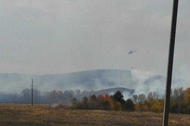 Лесные пожары - исключительно человеческий фактор.