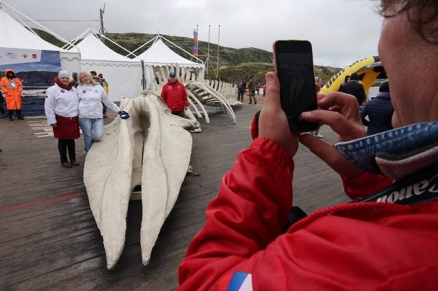 Все хотели сфотографироваться с огромным скелетом кита из «Левиафана».