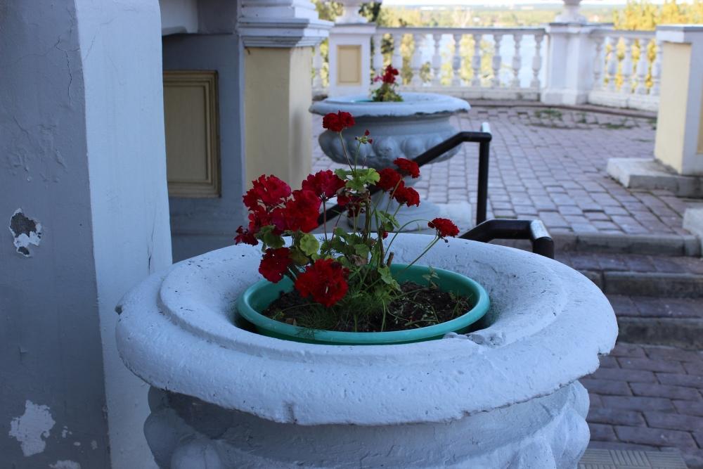 Эти вазоны стоят около входа в особняк со времён Мешкова.