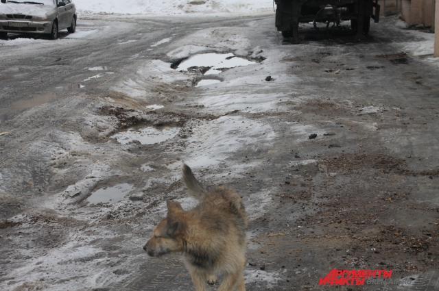 Просто дорога в Оренбурга, одна из многих.