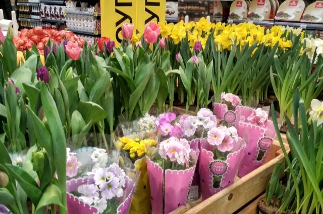 Цветы к празднику можно купить и в супермаркете