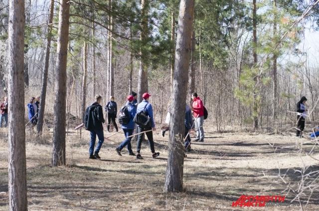 Лесные субботники.