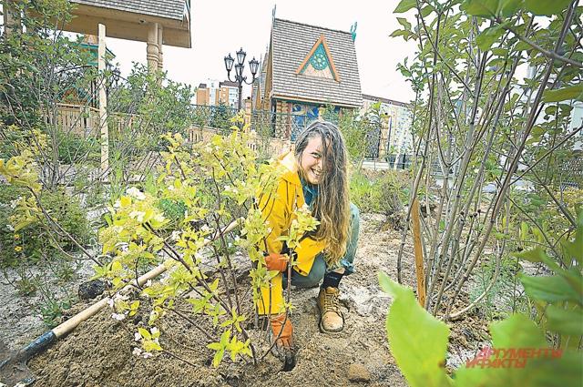 Вокруг фестивального городка на Святоозёрской улице разбит классный сад, за которым ухаживают профессионалы.