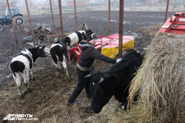 Ольга Кокшарова: «Фермерам дополнительные расходы не нужны!»