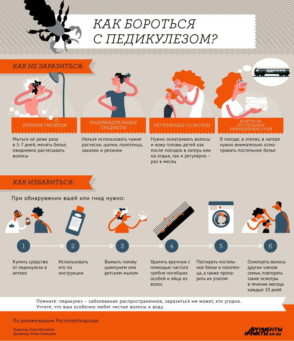 Как бороться с педикулезом? Инфографика