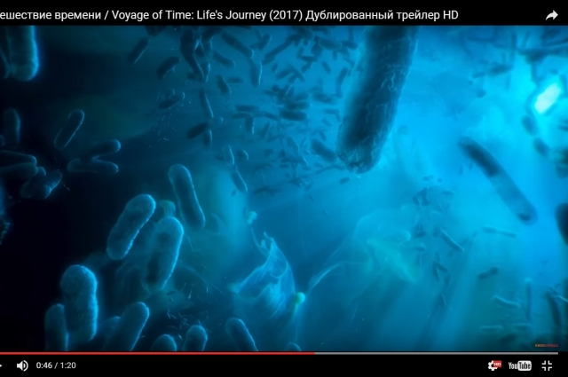 Терренс Малик работал над «Путешествием времени» 30 лет.