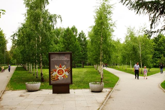 Аллея памяти в сквере им Сибиряков-Гвардейцев