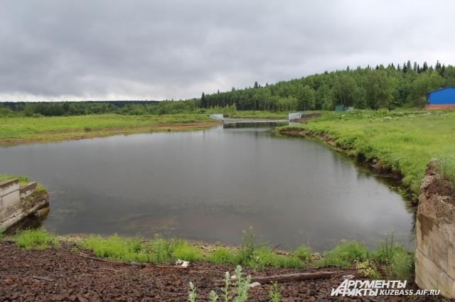 Скорее всего вблизи Тайги или даже в самом городе есть существенный источник загрязнения техногенного характера.