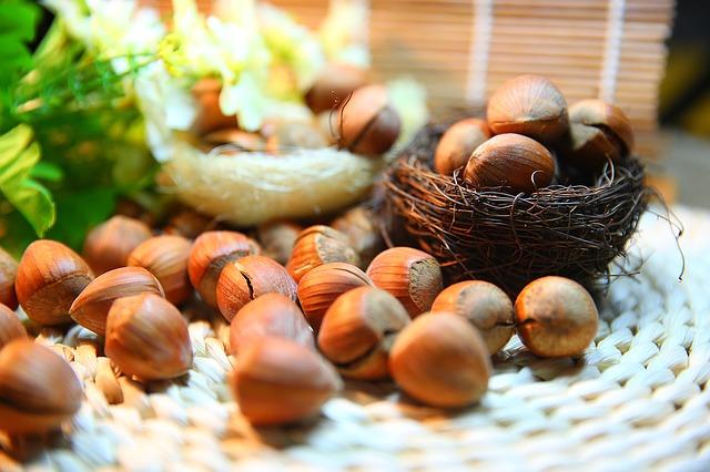 фундук, орехи
