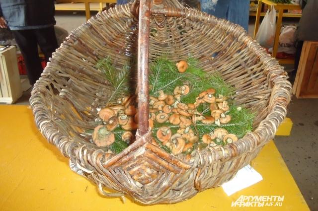 Грибы в этом году пошли рано. Сейчас на минирынках и даже вдоль дорог много продавцов лесных даров.
