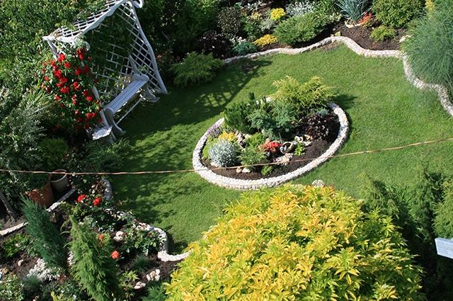 Круговая планировка используется и на подмосковных участках, например, в саду Евгении Леоновой. Напротив ее дома расположена зона отдыха с круглым газоном и клумбой такой же формы посередине. Тему удачно поддерживают стриженые шары кустарников с желтой листвой: бузина черная Aurea и спирея японская. Границу композиции подчеркивает луговой чай, или вербейник монетчатый, почвопокровное растение с круглыми же зелеными листочками, густо усыпанное ярко-желтыми цветками